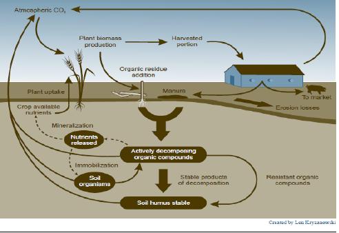 Smart Integrated Farming System Sistem Pembangunan Pertanian Menuju